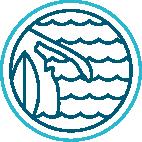 logo cape kite